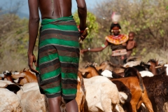 L'economia dei Pokot è basata prevalentemente sull'allevamento di bestiame.